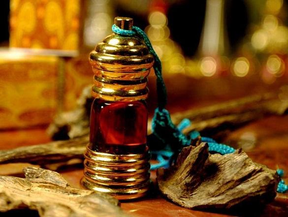 Manfaat dan Kegunaan dari Muntahan Ikan Paus (Ambergis)